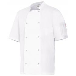 Casaco cozinheiro manga curta com molas